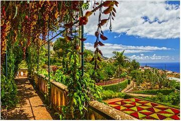 Funchal Garden