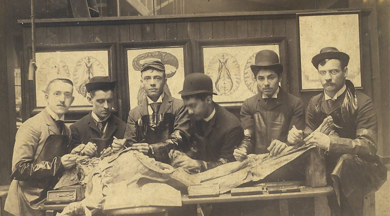 800px-Univ_of_Penn_first_year_medical_students_1890