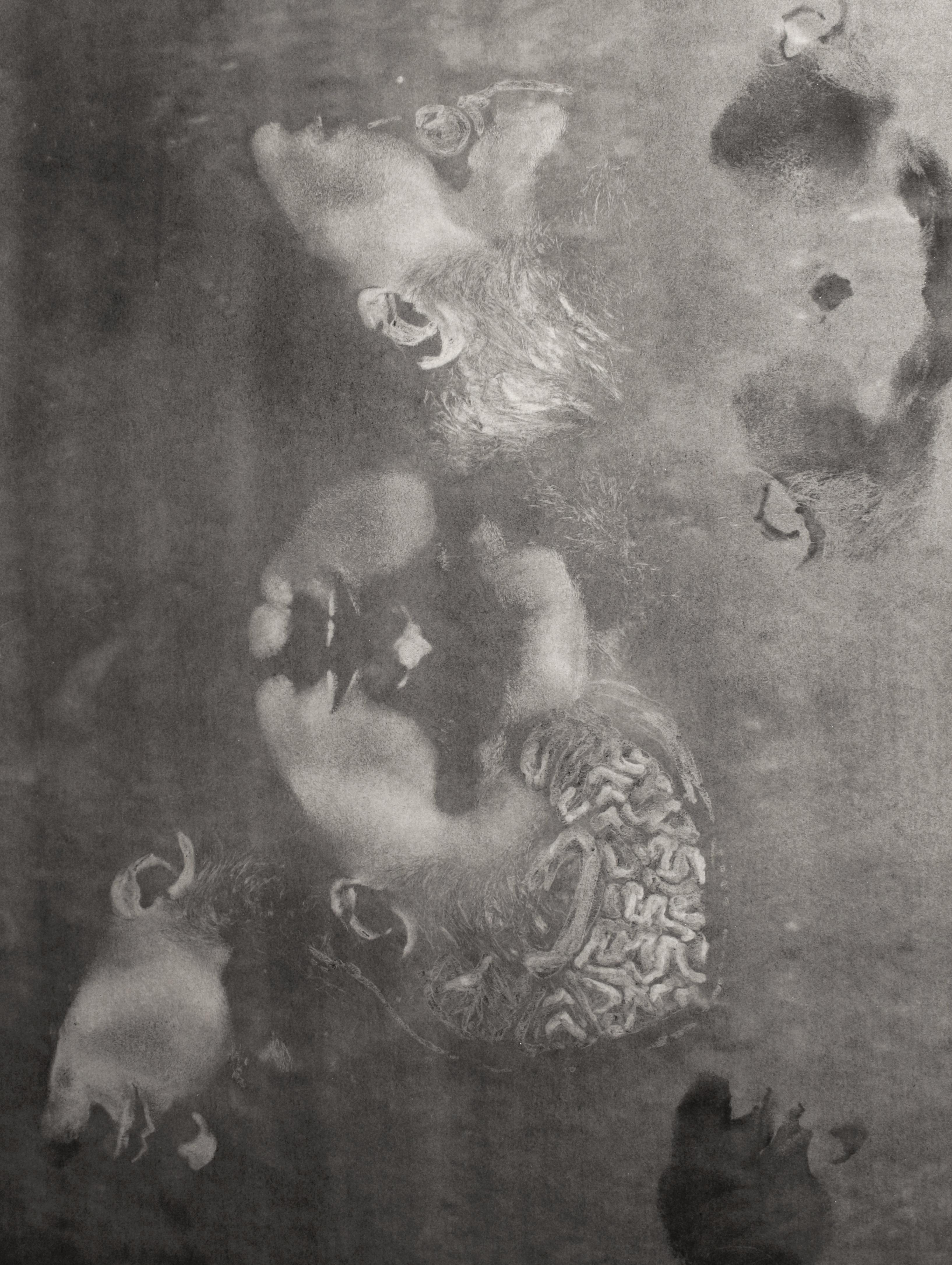 Stahl, Dermography (Detail)