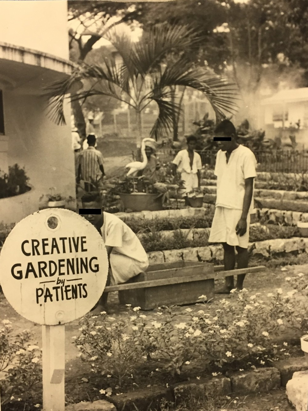 Creative gardening by patients